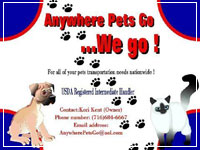 Anywhere Pet Transport